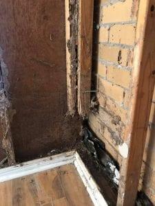 Termite Maintenance Requirements
